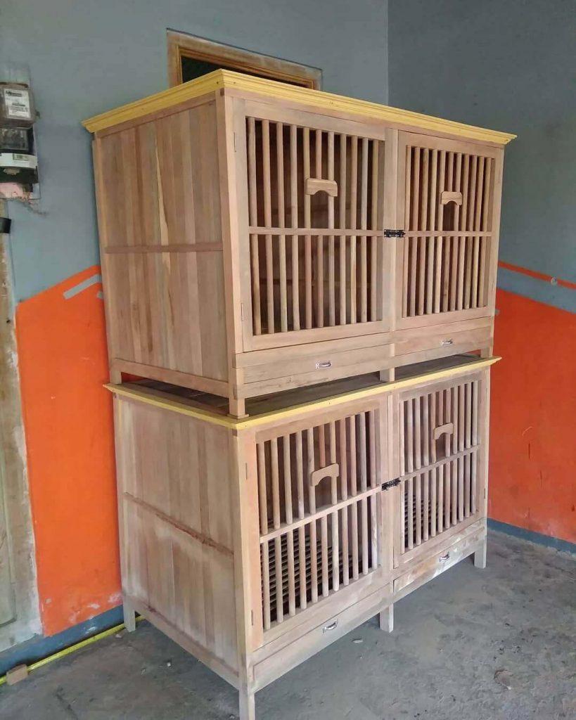 Kandang Box Ayam Petarung (1)